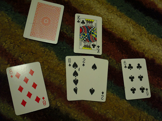Make 10 - Spades wins the bid for the King card.